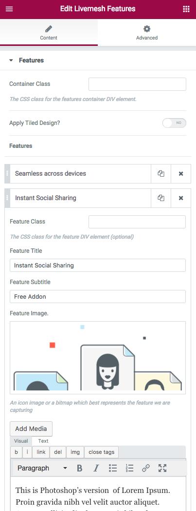Features Element Edit Window