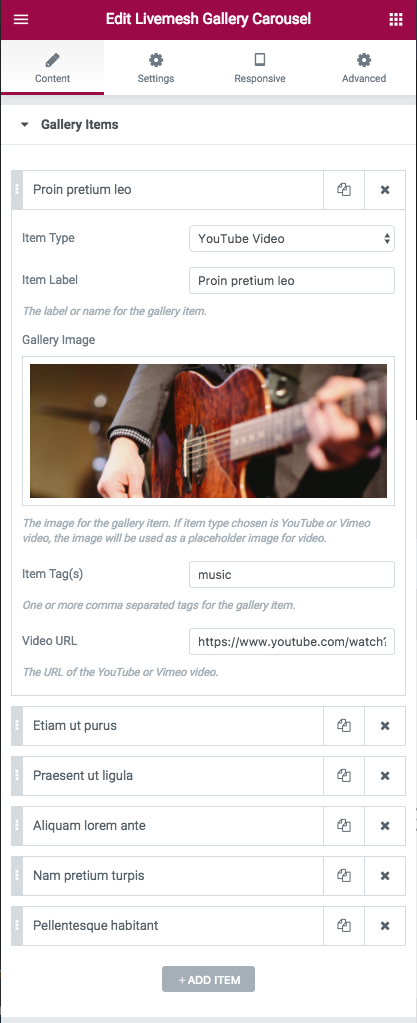 Video Carousel Element Edit Window